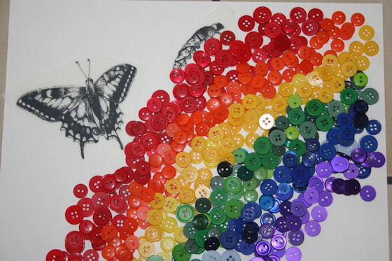 Butterfly button rainbow