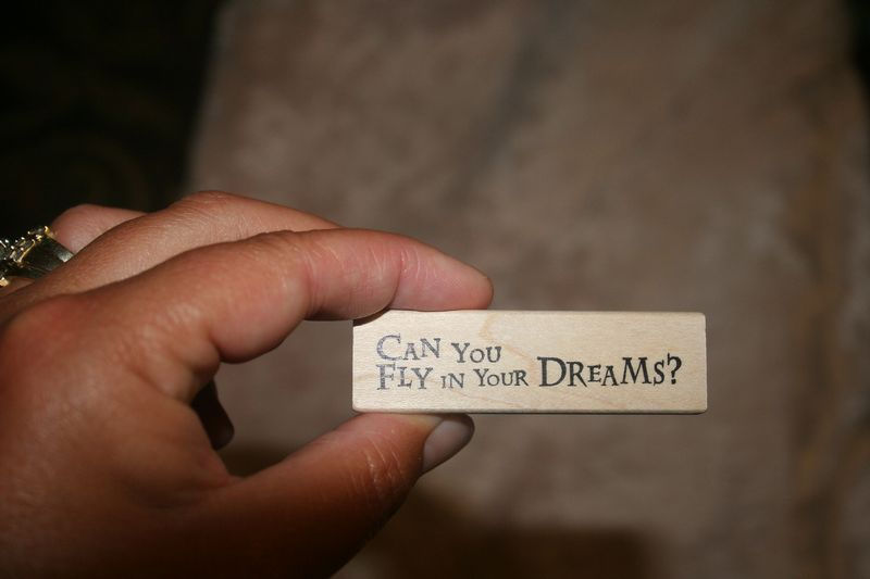can you fly in your dreams