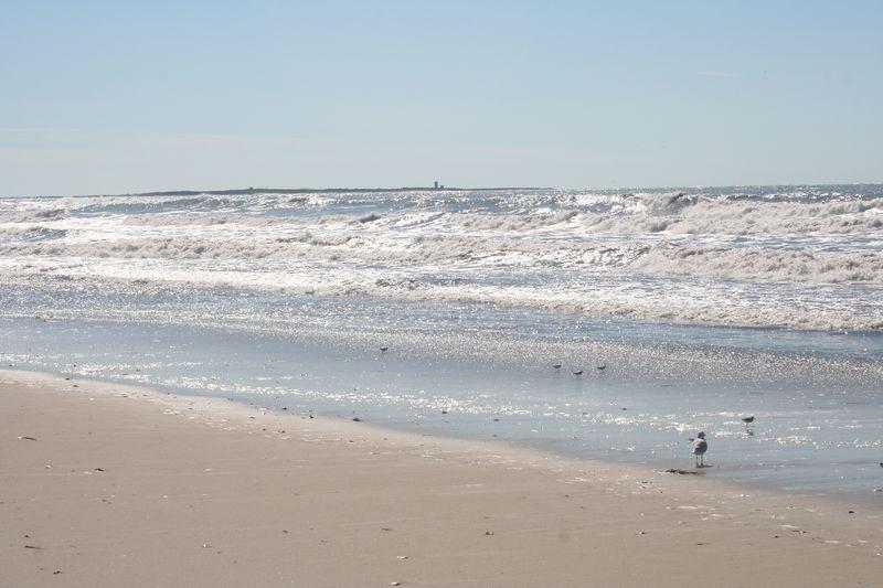 Beach after hurricane Irene