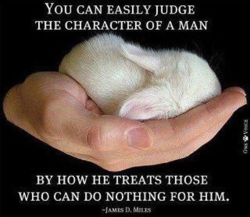 you-can-easily-judge-the-character-of-a-man-by-how-he-treats-those-who-can-do-nothing-for-him