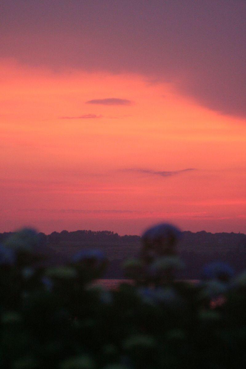 Pink purple orange sunset