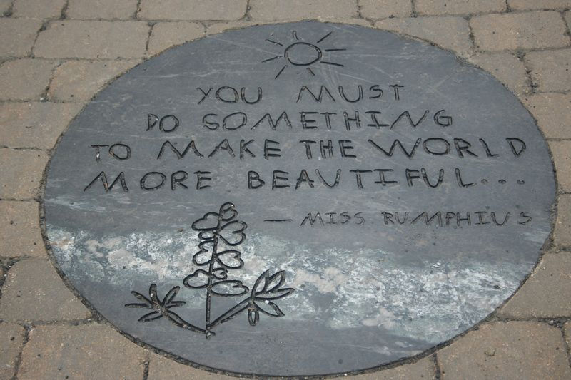 you must do something beautiful