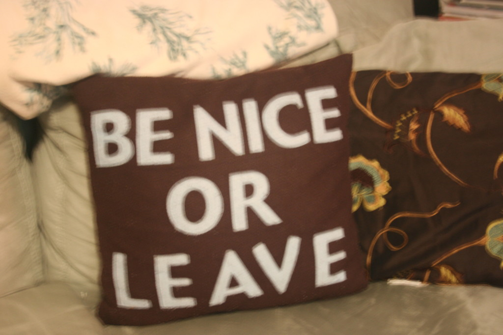 Be-Nice-or-Leave-Pillows